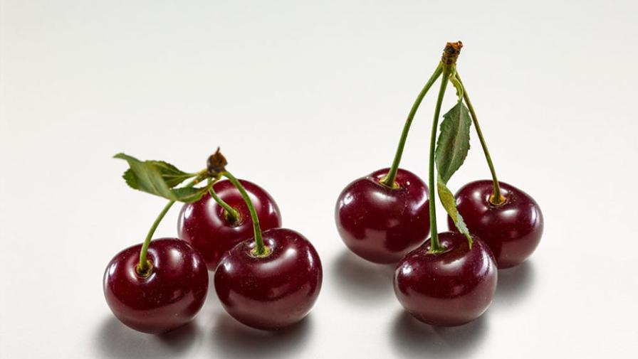 Вишня: польза и вред для здоровья, витамины и минералы в составе