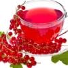 Смородина красная: польза и вред для здоровья