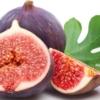Инжир: польза и вред для здоровья человека, противопоказания