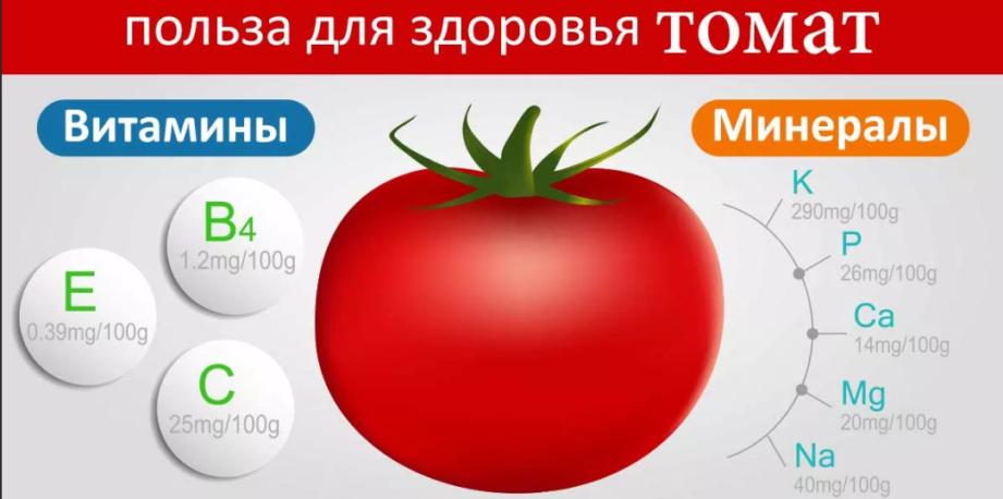 Сколько помидоров можно съедать при похудении