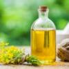 Польза и вред рапсового масла для организма, состав, как выбирать
