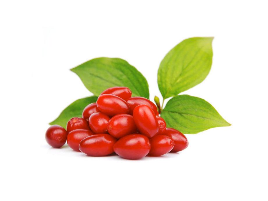 Польза и вред кизила для организма человека, витамины