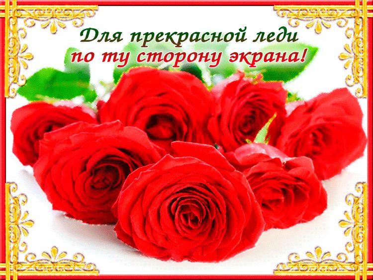 Красивый букет роз для любимой