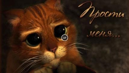 Гифки «Прости меня». 80 GIF анимаций для восстановления отношений