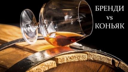 Бренди и коньяк: в чем разница между алкогольными напитками?