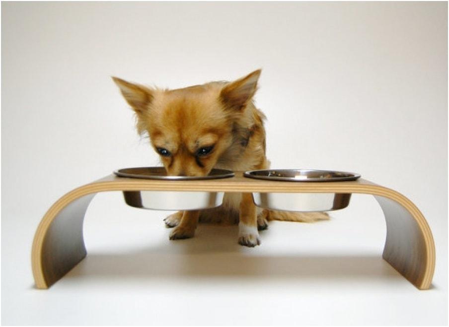Собака кушает из миски на подставке