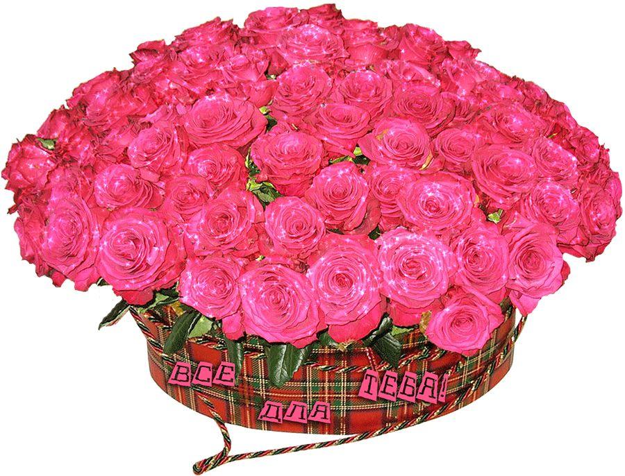 Большие букеты белых роз фото