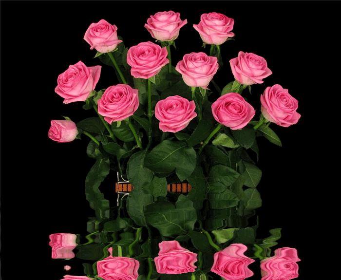 """Гифки """"цветы"""". Большая подборка GIF анимации с цветами."""