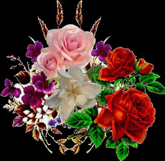 красивые розы скачать картинки