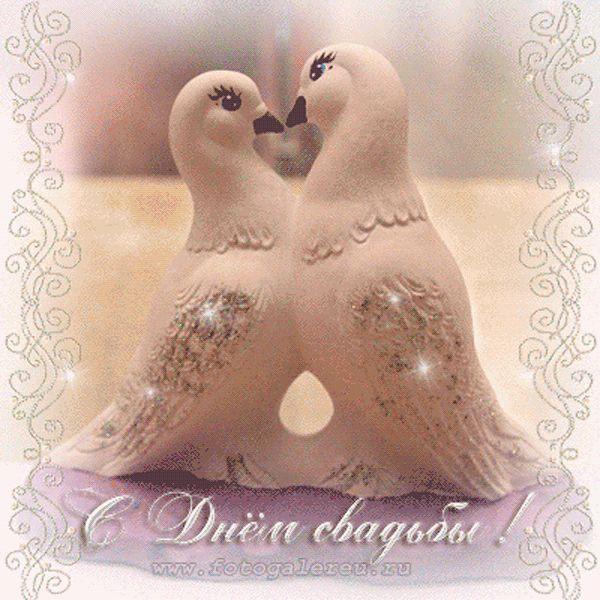 Доктору, открытки с днем свадьбы с голубями