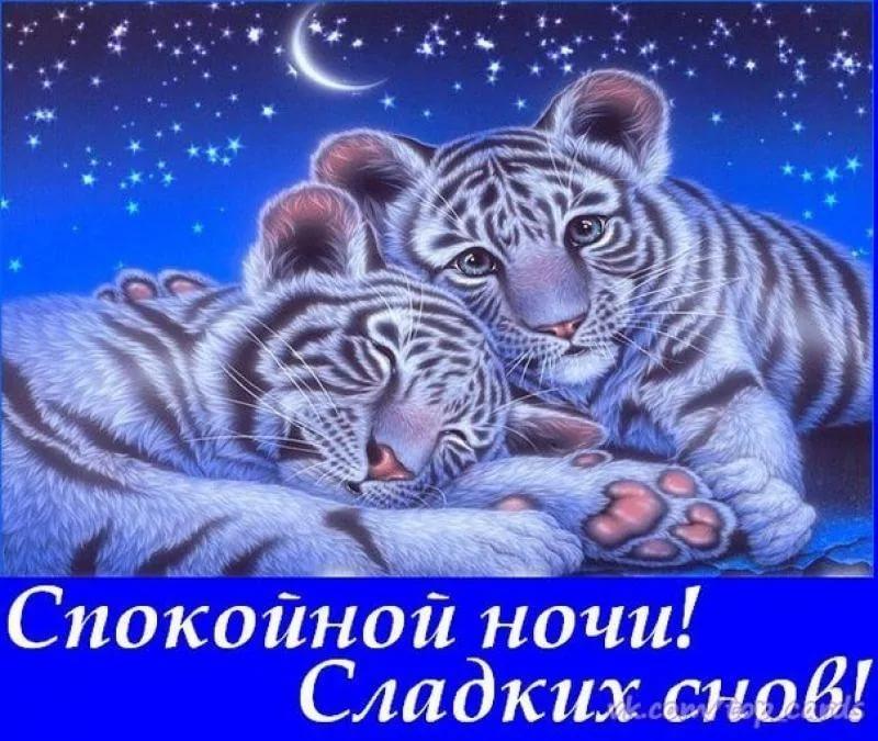 Думаю тебе, картинки с надписью всем спокойной ночи и сладких снов
