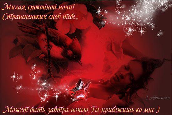 dobroy-nochi-lyubimaya-1