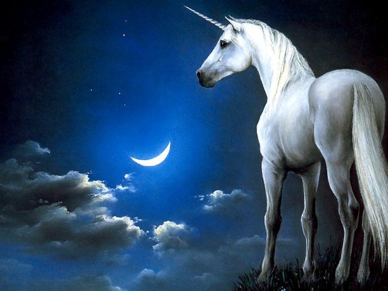 Единорог: красивые картинки для срисовки. Лёгкие и сложные