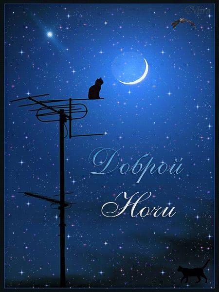 Гифки «Спокойной ночи, любимая». Подборка красивой анимации.