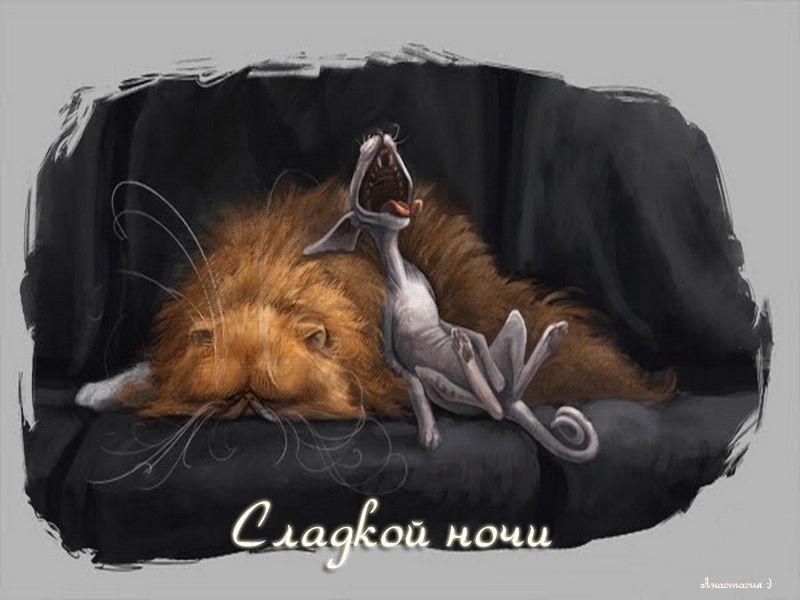 """Гифка """"сладкой ночи"""""""