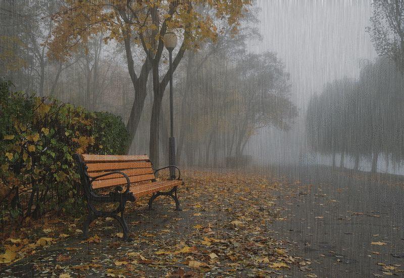 Девушка под дождем с зонтом картинки