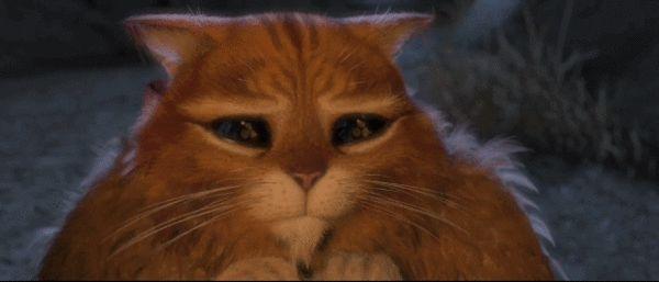 Гифка пожалуйста с котом в сапогах