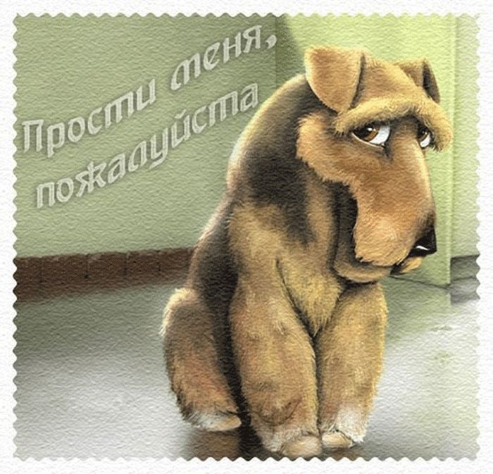 """Гифки """"Прости меня"""". 80 GIF анимаций для восстановления отношений"""