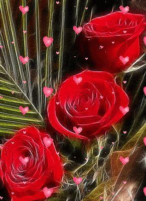 гифка 3 розы