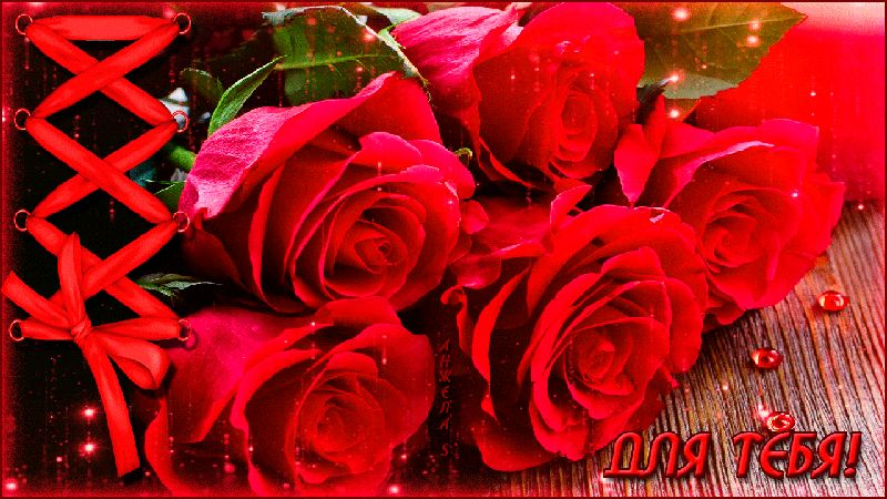 гифка 5 роз сверкают