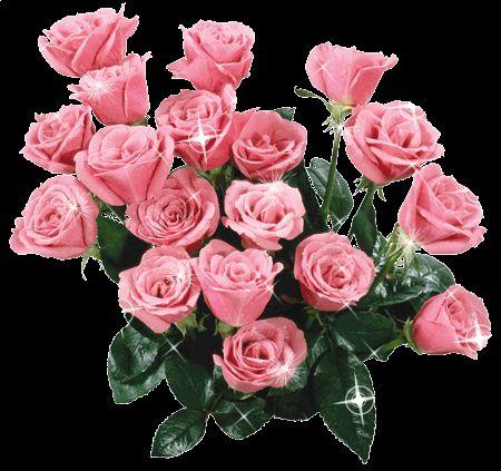 розовые розы гифка