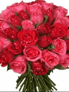 гифка букет роз