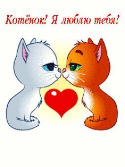 гифка котенок я тебя люблю