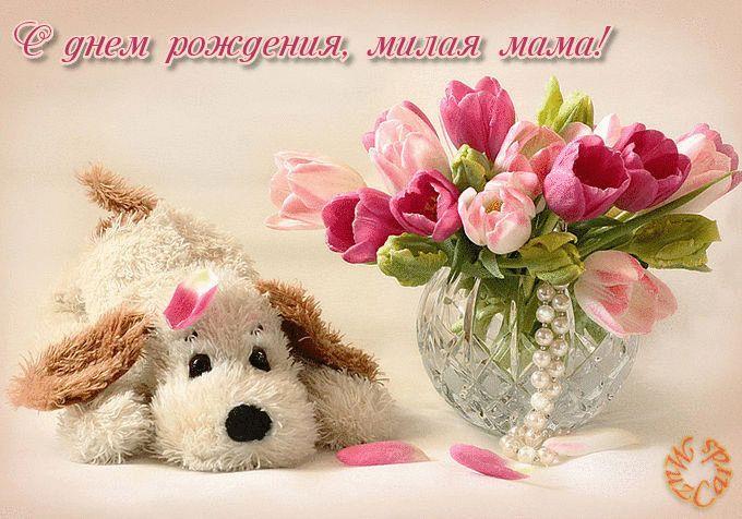 Гифка с днём рождения маме с собачкой и тюльпанами