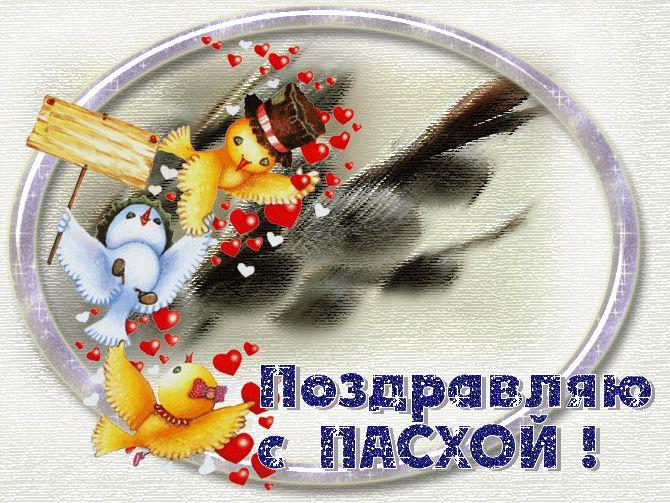 gifki-s-pashoy-1