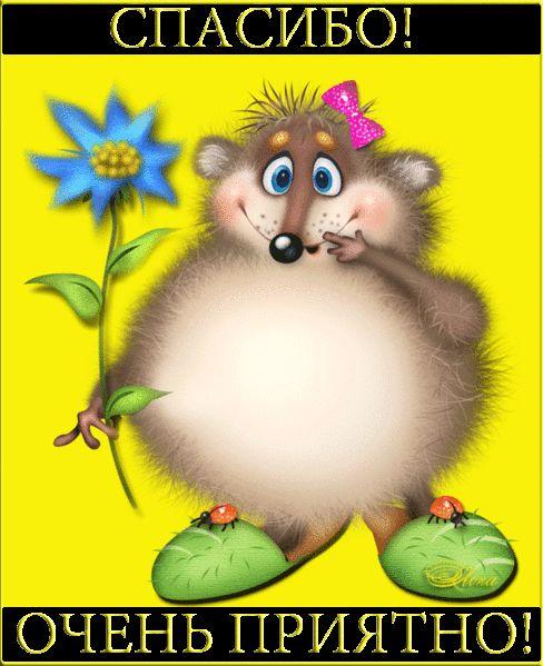толстая мышка благодарит за поздравление