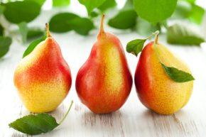 Гликемический индекс груши, калорийность, польза и вред