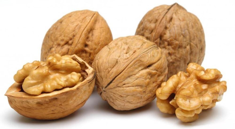 Грецкий орех: польза и вред для организма, калорийность, состав