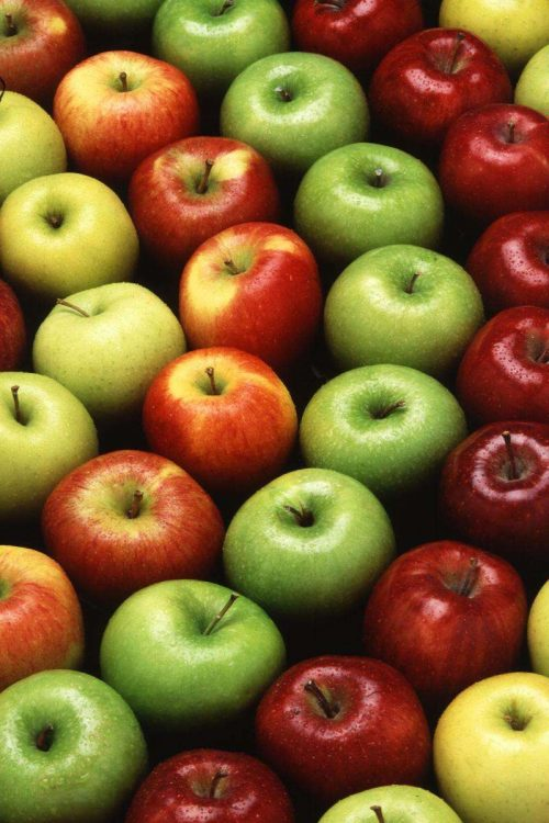 Много яблок разных видов