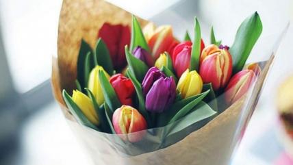 Как продлить жизнь тюльпанам