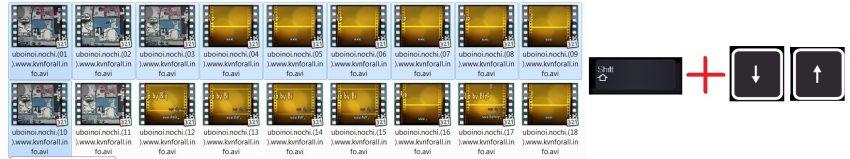 Как выделить несколько файлов с помощью клавиатуры