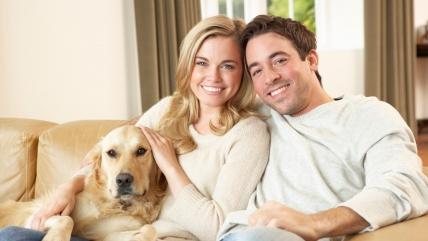 Какую породу собак выбрать для квартиры: советы кинолога