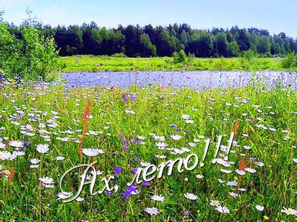 Гифки про Лето. Солнце, природа, поздравления с летом