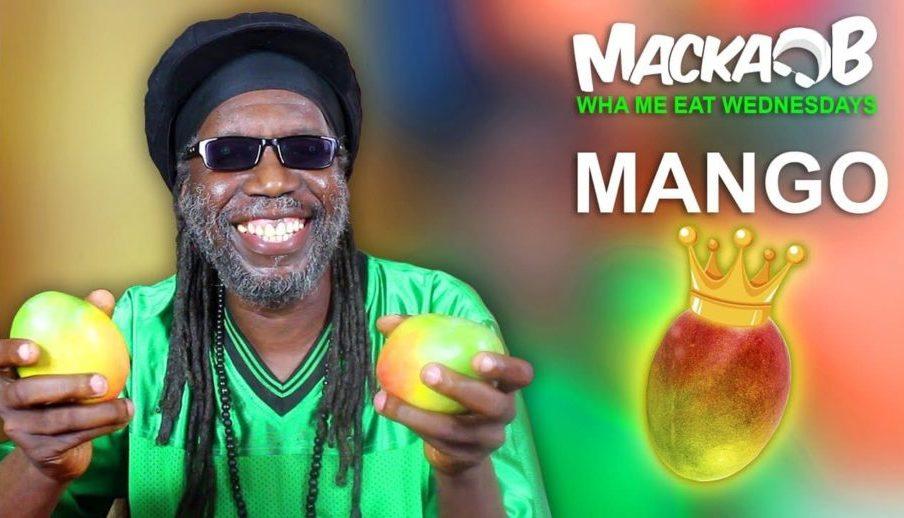 Манго: польза и вред для организма. Калорийность фрукта