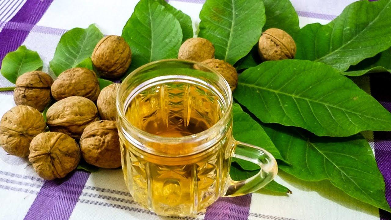 Настой из листьев грецкого ореха
