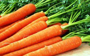 Гликемический индекс моркови, полезные свойства