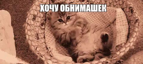 obnimashki-11