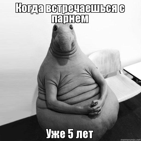 otkuda-vzyalsya-zhdun-19
