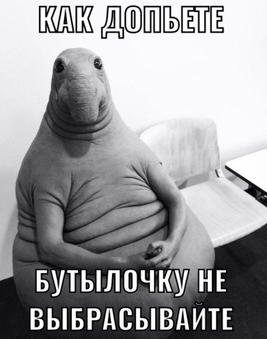 otkuda-vzyalsya-zhdun-9