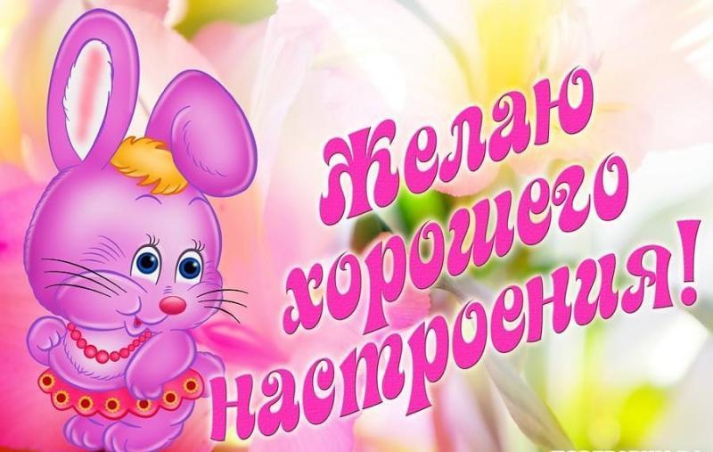 И снова о компаньонах  Энциклопедия роз
