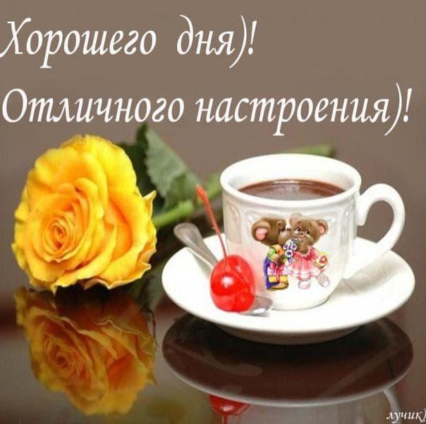 Картинки с добрым утром и хорошего дня милый