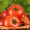 Польза и вред красных помидор для организма, состав, пищевая ценность