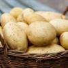 Гликемический индекс картофеля: жареного, варёного, пюре, чипсов. Калорийность