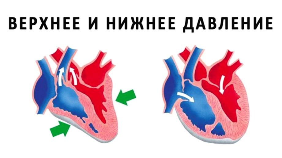 разница между верхним и нижним давлением