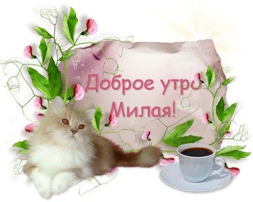 Открытки доброе утро любимая ириночка, картинки