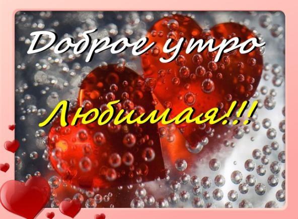 """Сердечки в росе и надпись """"Доброе утро, любимая""""!"""